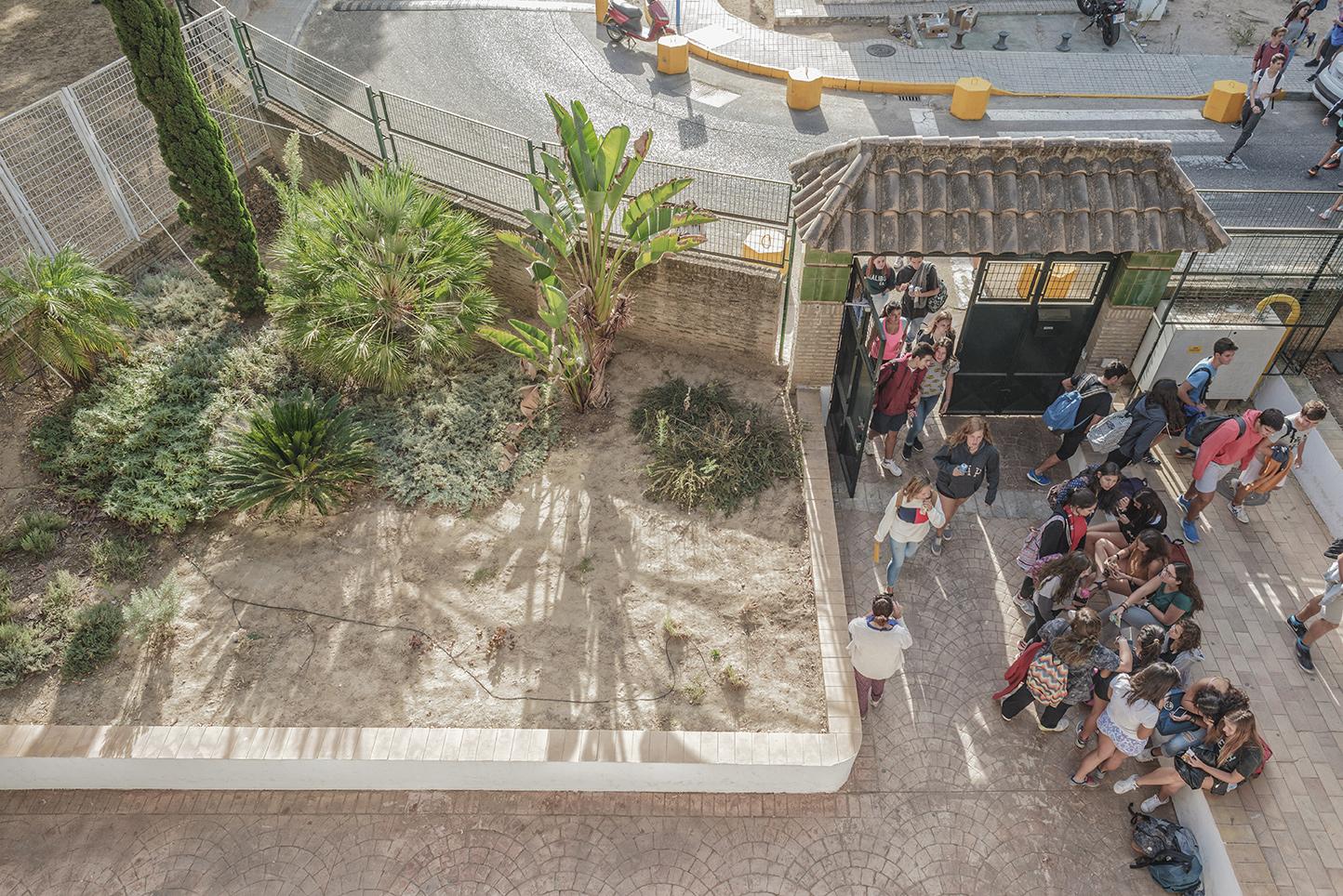 Colegio Aljarafe entrando